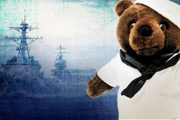 navy bears